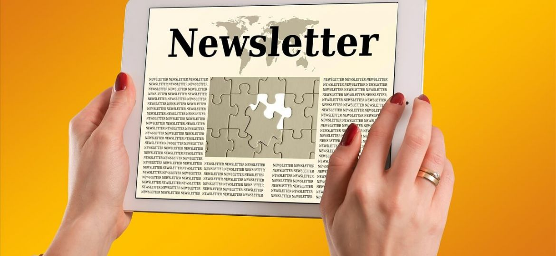 4_newsletter-business